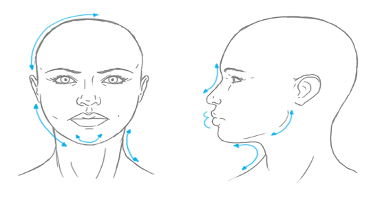 Vẽ chân dung nữ